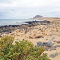Cómo llegar a la Graciosa desde Lanzarote