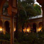 El Palacio de Dueñas, limoneros a la luz de la luna