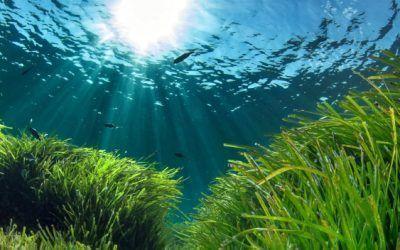 Por qué quiero ir a las Islas Baleares en invierno