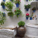 Un día por los patios de Córdoba