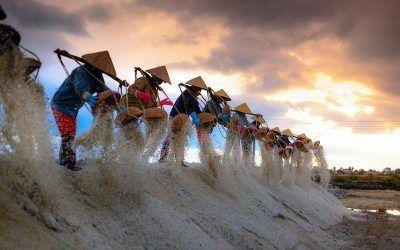 Viajeros responsables en Vietnam