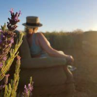 Finca las coronas; turismo de experiencias y sensaciones