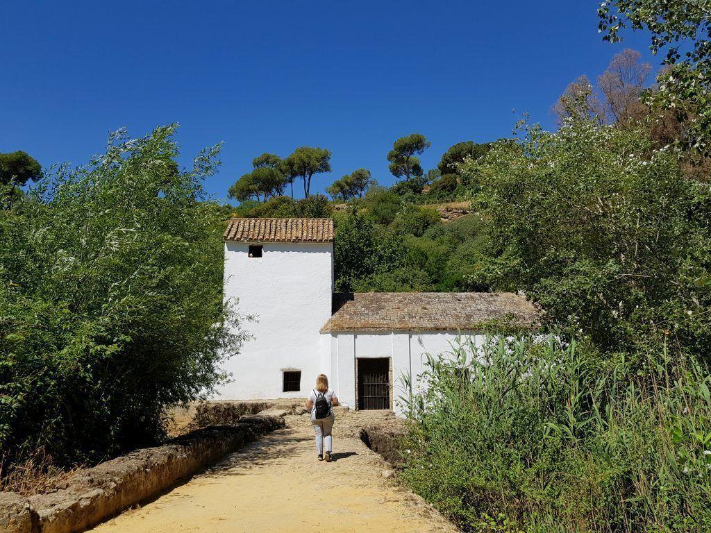 dónde hacer un picnic cerca de Sevilla_2