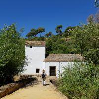 Diez lugares dónde hacer un picnic cerca de Sevilla